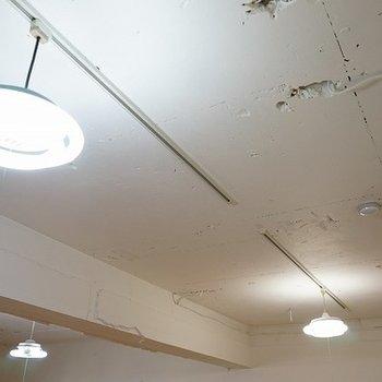 ライティングレールです。照明も付け替えられますよ。