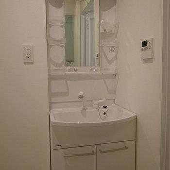 洗面台の左手に洗濯機バンがあります(写真は別部屋です)