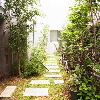 庭もかわいい!