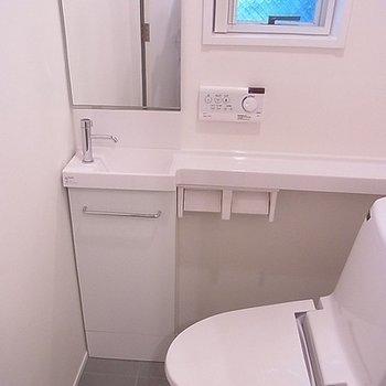 トイレには小さな手洗い付。※写真は別部屋