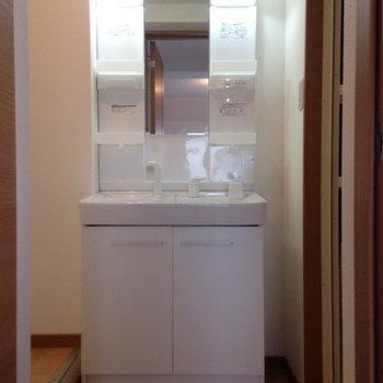 洗面台。その左隣が洗濯機を置く場所になります。