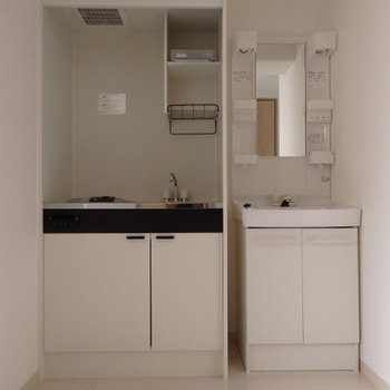 キッチンは電気1口。洗面台はココに