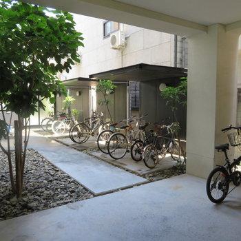 自転車置き場も中に
