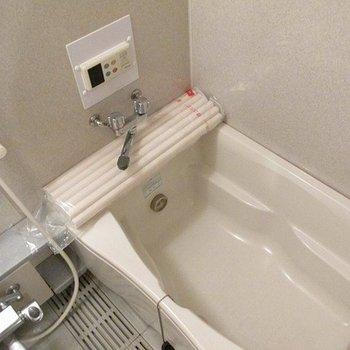 お風呂は大きめできれいです。