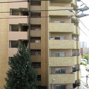 目の前にマンションが建っていますが横は抜けていますよ。