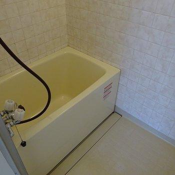 浴槽は少し古さを感じます