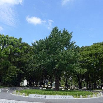 白川公園すぐ近く。近くに緑があるって良いと思います!
