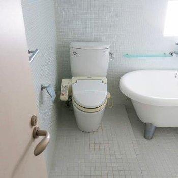 トイレも光がいっぱい入ってきていいですね~!