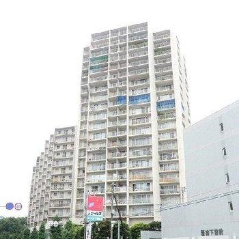 21階建てマンションの17階。