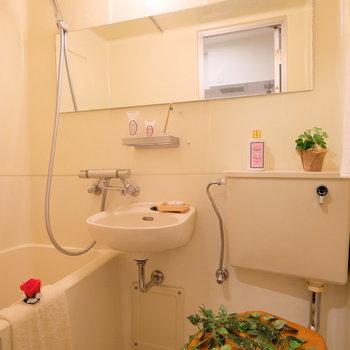 シャワーが新しめなので、快適♪