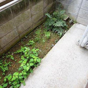 バルコニーはゆったり!緑を植えたいです!!