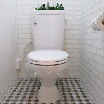 お店屋さんのようなおトイレです♪