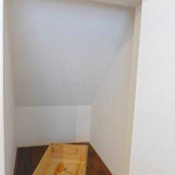 階段下の収納スペース。ハリーポッターを観たことがある方は、ワクワクするのでは?