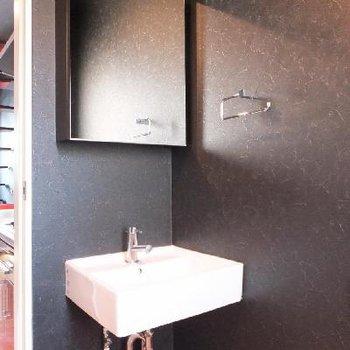 洗面台。ミラーの後ろは収納です。