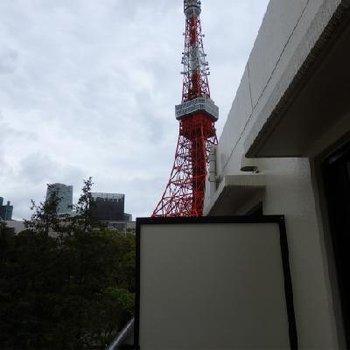 ベランダからも東京タワーチラリズム。