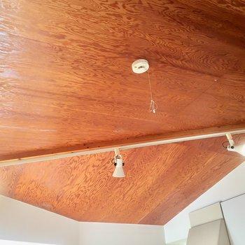 天井にも木の温かみ。ライティングレールも素敵です。