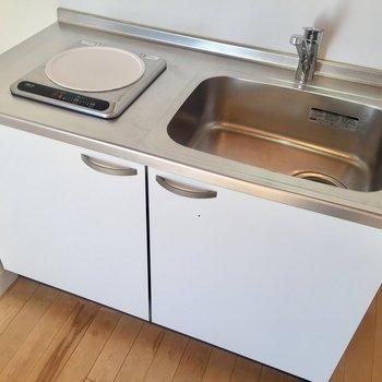シンクには余裕があるので、調理台を用意すれば自炊もできそう。