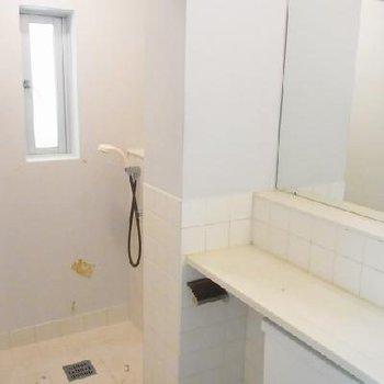 このシャワールームなら浴槽がなくても満足できる!※写真は別部屋
