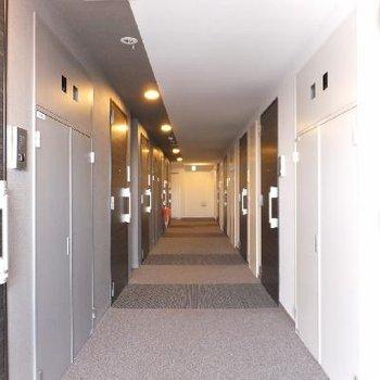 高級感ある内廊下。