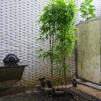 竹って癒される。。
