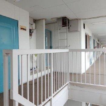 レトロを楽しむ共有部。ブルーの玄関扉が可愛らしい。
