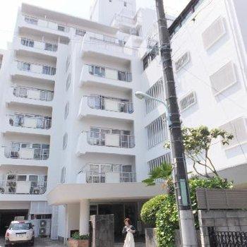 路地奥にある11階建てのマンションです。