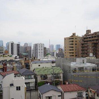肉眼ではもっと大きく東京タワー見えます!