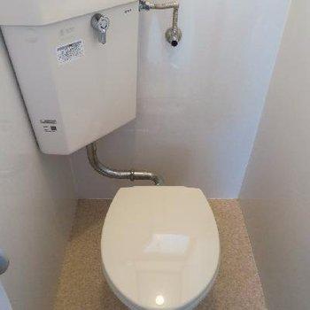昔ながらのトイレです。