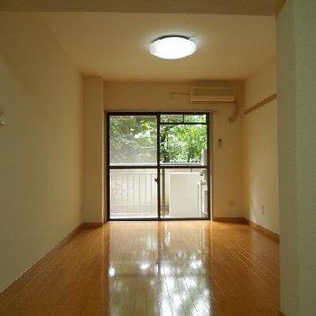 緑の感じられるお部屋です※写真は1階