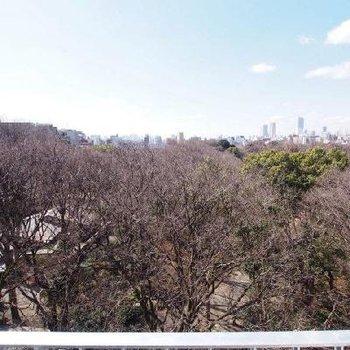 見よ、この景色。すべてを手に入れたような気分に浸れそうだ。※写真は9階