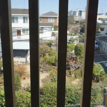 目隠しフェンス越しに前のお家のお庭が見えます。※写真は前回募集時のものです