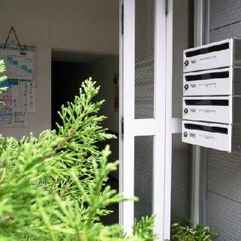 玄関部分の写真です。
