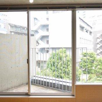 洋室の良い窓