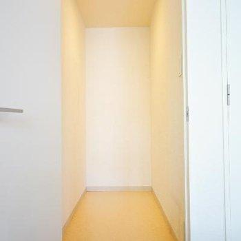 居室から扉を開けると、この空間。大きな収納に!※写真は前回募集時のものです