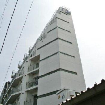 白い巨塔。