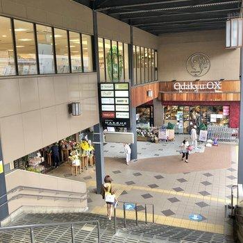駅中にはスーパーやドラッグストアがありました。