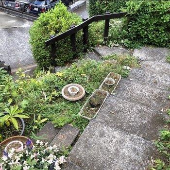 緑に囲まれた階段を下りていきます。