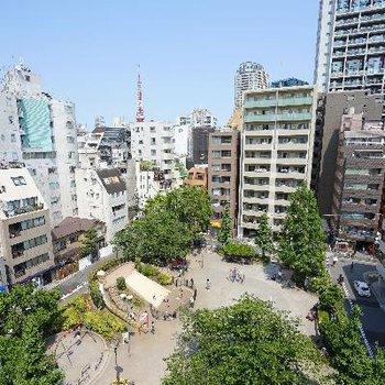 眺望も最高!東京タワーも!