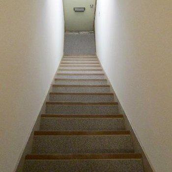 お部屋から玄関ドアまでの階段です。