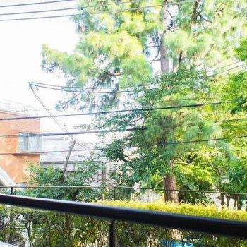 ベランダからの眺望は緑がいっぱい。※写真は107号室