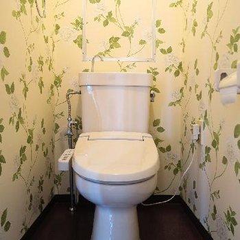 お嬢様ライクな雰囲気のトイレです。