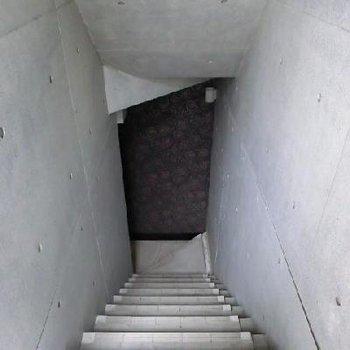 関係ないですが、地下一階に繋がる共用部のクロスがかわいいです。