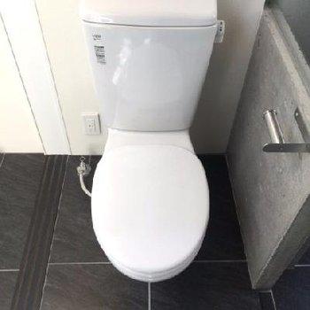ウォッシュレットなし。トイレまでシンプル。