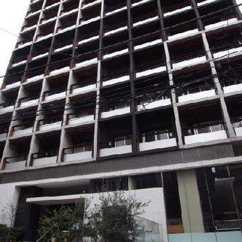 大きなスケールのマンション、シックなブラックで素敵