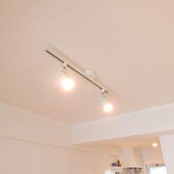 天井にはライティングレール