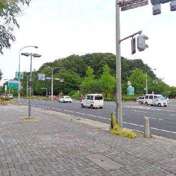 駅を降りるとこの環境。名古屋の中でも、これだけ緑のある環境はココか鶴舞くらい