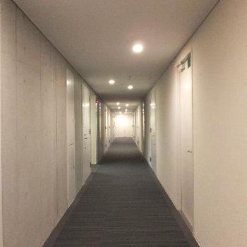 お部屋前の共用部。ホテルライク