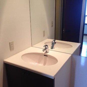 全面鏡です!隣は洗濯機置場