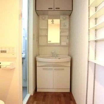 洗面台と、左手が併設のトイレですね。
