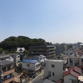 眺望もいいですね!池上本門寺も見えますよ